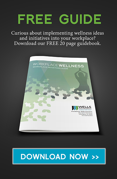Workplace wellness guidebook