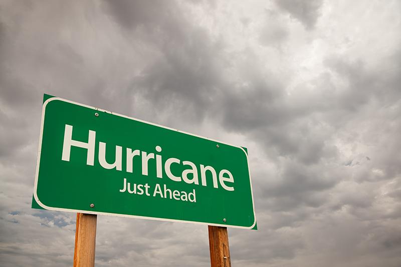 wind insurance