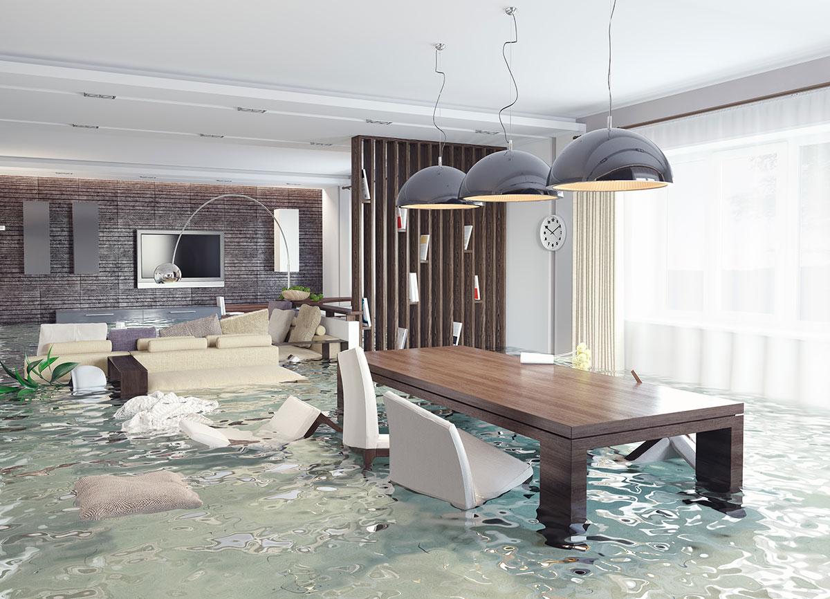 Flood insurance information