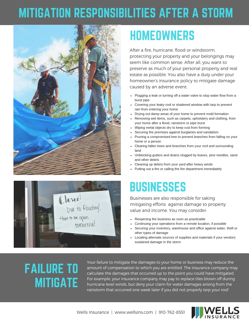After The Storm : Mitigation Responsibilities for Homeowners and Businesses