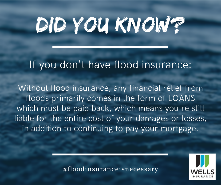 without flood insurance, financial relief comes primarily from loans which have to be repaid, on top of your existing mortgage commitment.