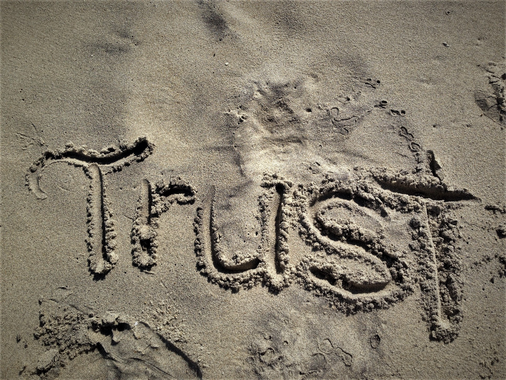 Building Trust Among Employees During a Pandemic